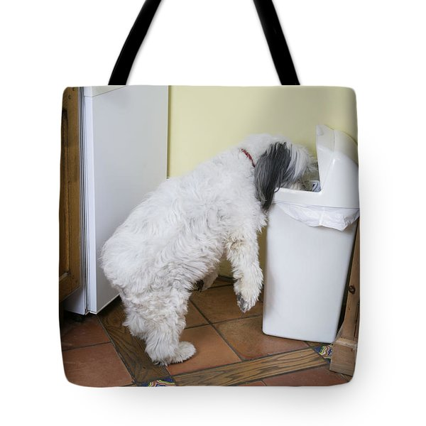Bad Doggy Behavior Tote Bag