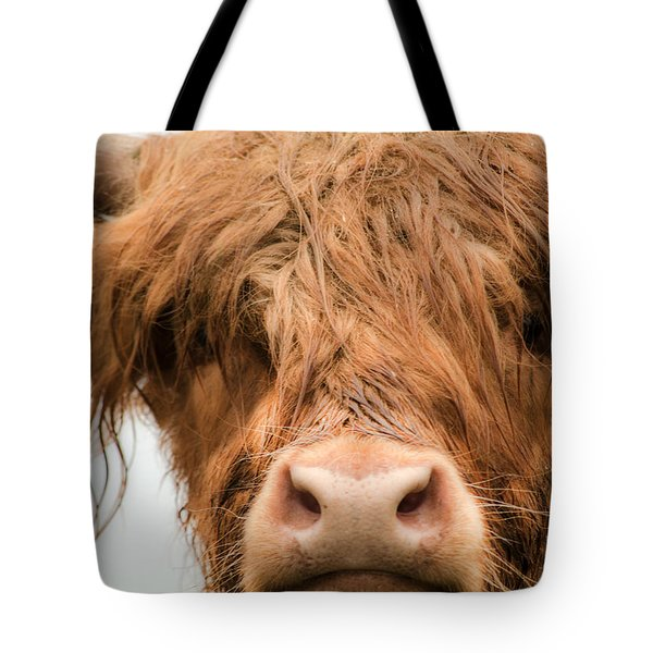 Bad Hair Day Tote Bag by Linsey Williams