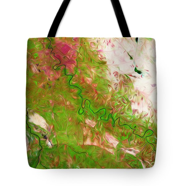 Baghdad Iraq Tote Bag by Phill Petrovic