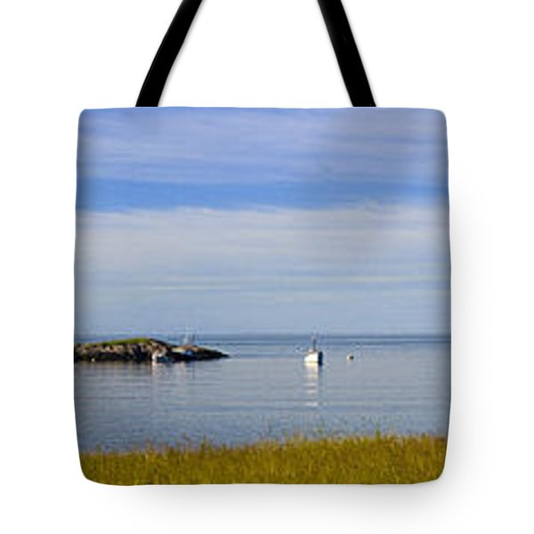 Bailey's Mistake Panorama Tote Bag by Marty Saccone