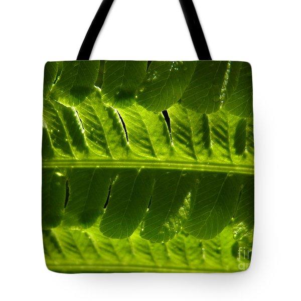 Tote Bag featuring the photograph Balance by Agnieszka Ledwon
