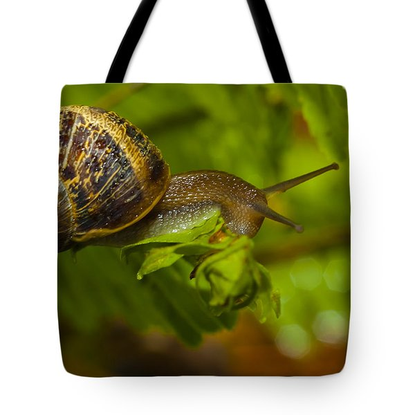 Balance Is Everything Tote Bag