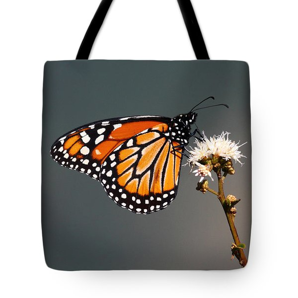 Balancing Act Tote Bag by James Brunker