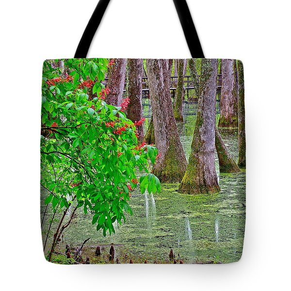 Bald Cypress And Red Buckeye Tree At Mile 122 Of Natchez Trace Parkway-mississippi Tote Bag by Ruth Hager
