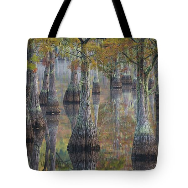 Bald Cypress Trees In A Forest, George Tote Bag