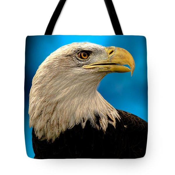 Bald Eagle And Fledgling  Tote Bag by Bob Orsillo