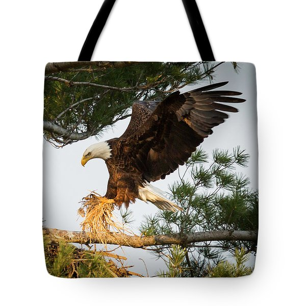 Bald Eagle Building Nest Tote Bag by Everet Regal