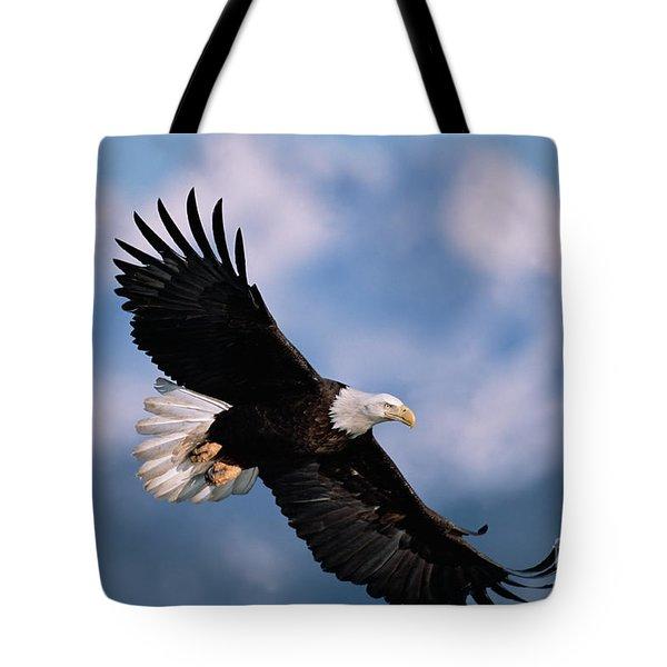 Bald Eagle Flying Kachemak Bay Tote Bag