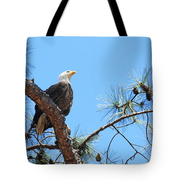 Bald Eagle Tote Bag by Geraldine DeBoer