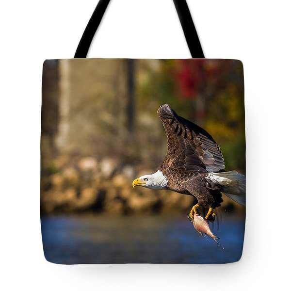 Bald Eagle In Flight Over Water Carrying A Fish Tote Bag
