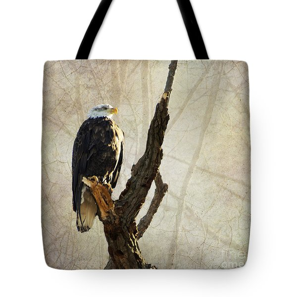 Bald Eagle Keeping Watch In Illinois Tote Bag