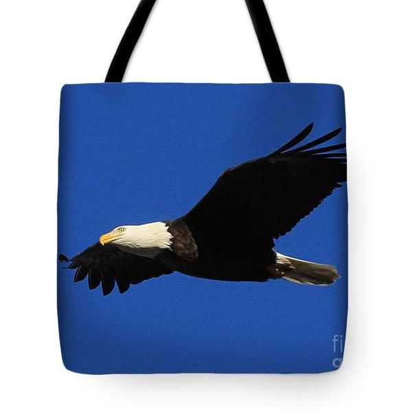 Tote Bag featuring the photograph Bald Eagle Lock 14 by Paula Guttilla