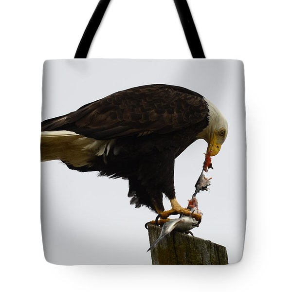 Bald Eagle Part Of Nature Tote Bag by Bob Christopher