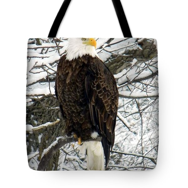 Tote Bag featuring the photograph Bald Eagle by Penny Meyers