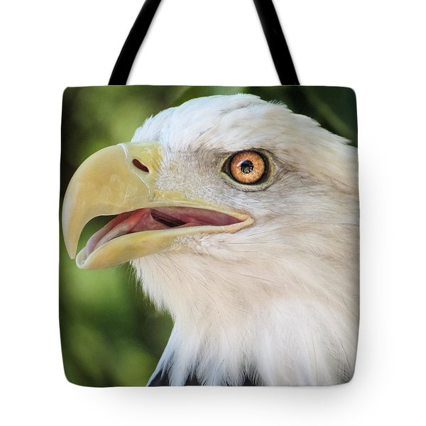 Tote Bag featuring the photograph American Bald Eagle Portrait - Bright Eye by Patti Deters