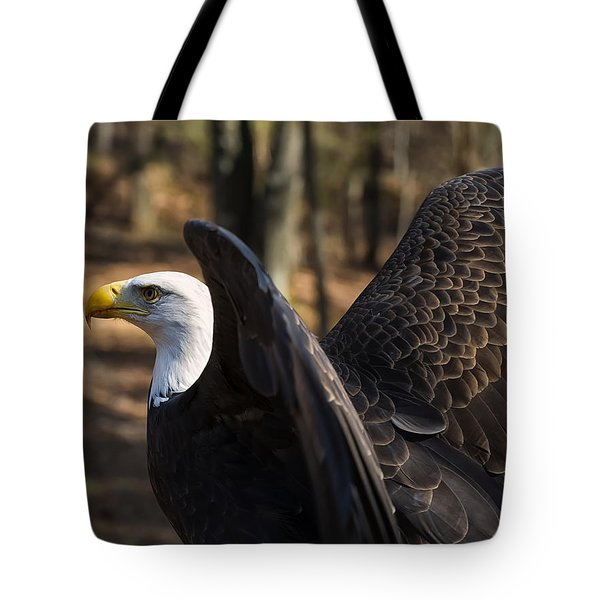 Bald Eagle Preparing For Flight Tote Bag by Chris Flees