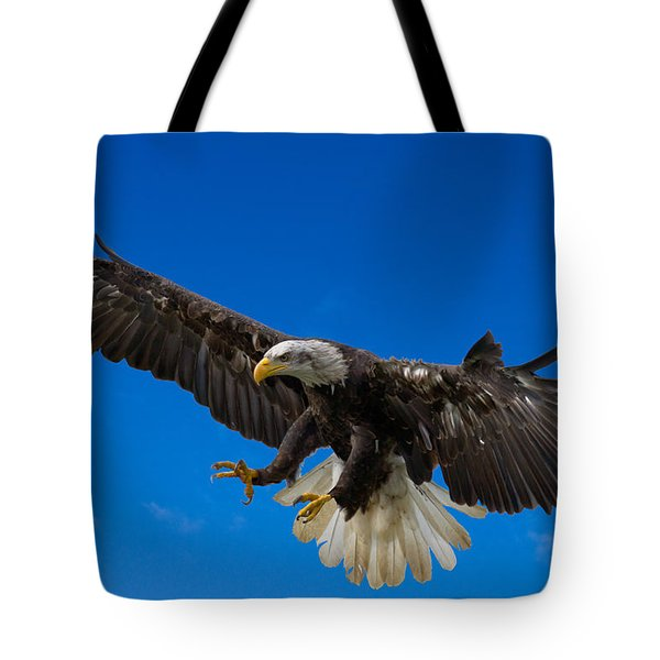 Bald Eagle Tote Bag by Scott Carruthers