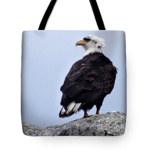 Bald Eagle Watching Tote Bag