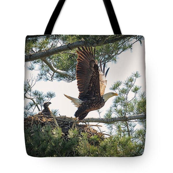 Bald Eagle With Eaglet Tote Bag by Everet Regal