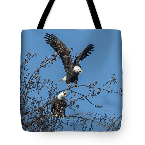 Bald Eagles Screaming Drb169 Tote Bag by Gerry Gantt