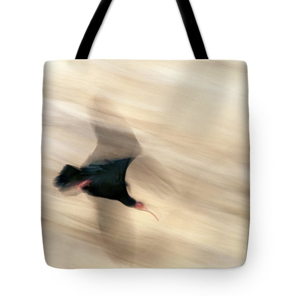 Bald Ibis Tote Bag
