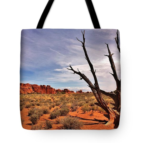 Bald Tree At Arches  Tote Bag by Benjamin Yeager