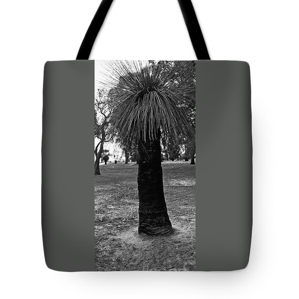 Tote Bag featuring the photograph Balga Tree by Cassandra Buckley