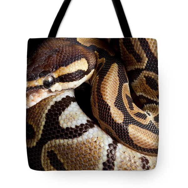 Tote Bag featuring the photograph Ball Python Python Regius by David Kenny