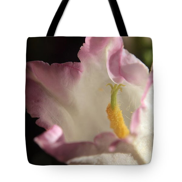 Balloon Flower Tote Bag by Kenny Glotfelty