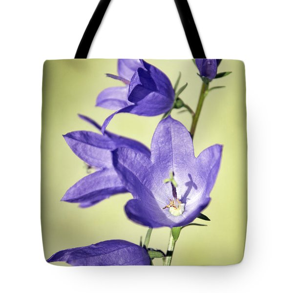 Balloon Flowers Tote Bag by Tony Cordoza