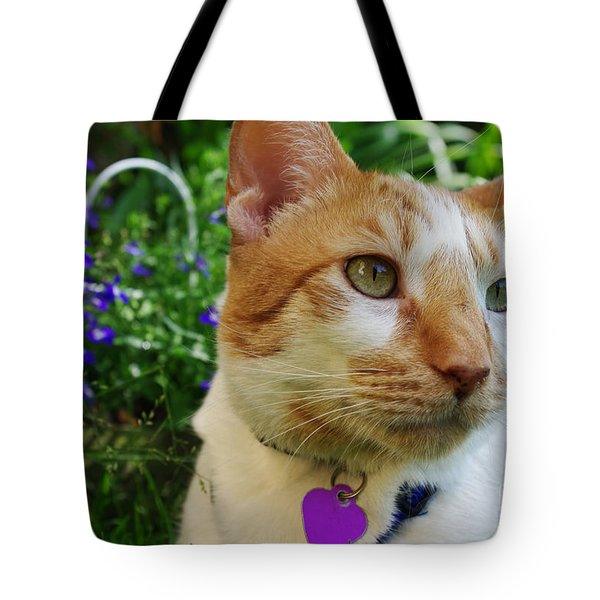 Baloo Gazing Into The Distance Tote Bag by Mariola Bitner