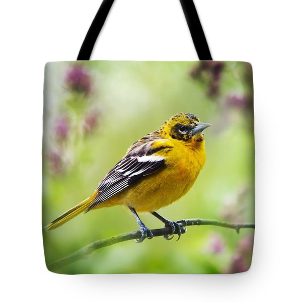 Baltimore Oriole II Tote Bag by Christina Rollo