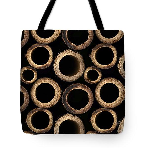 Bamboo Rings Tote Bag by Bedros Awak