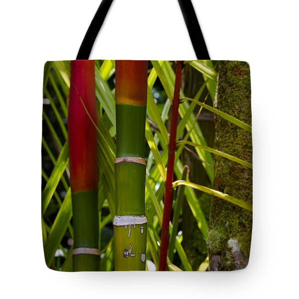 Bamboo Too All Profits Go To Hospice Of The Calumet Area Tote Bag