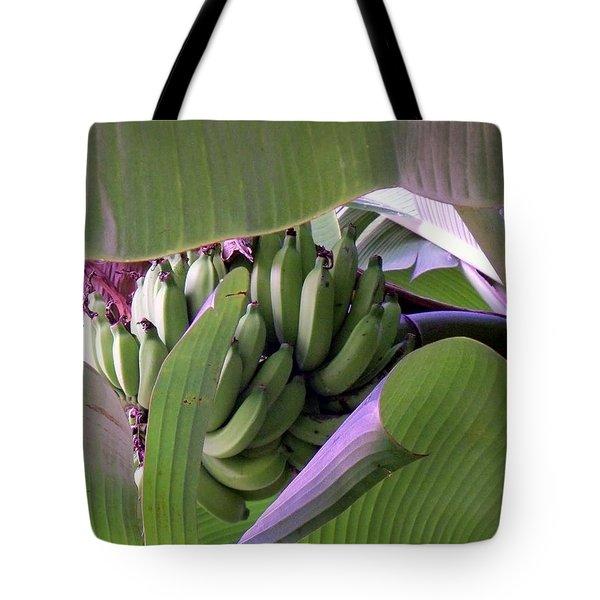 Banana Leaf Curtain Tote Bag