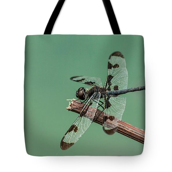 Banded Pennant Tote Bag