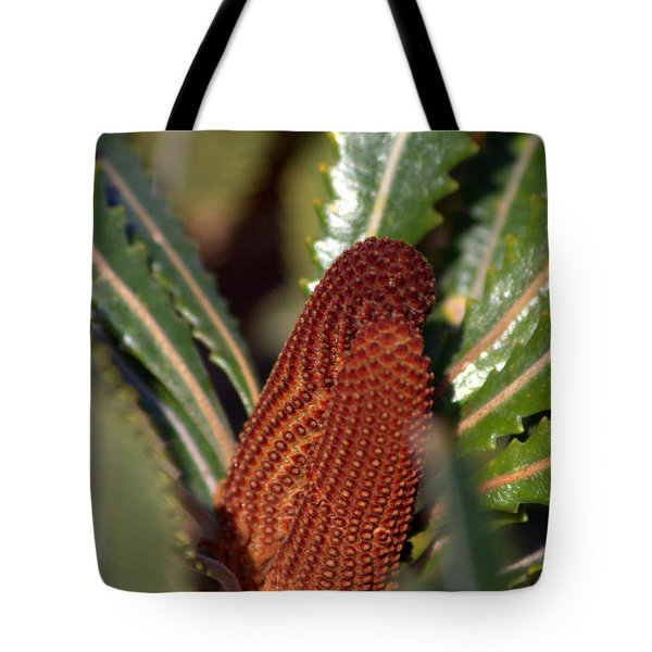 Tote Bag featuring the photograph Banksia by Miroslava Jurcik
