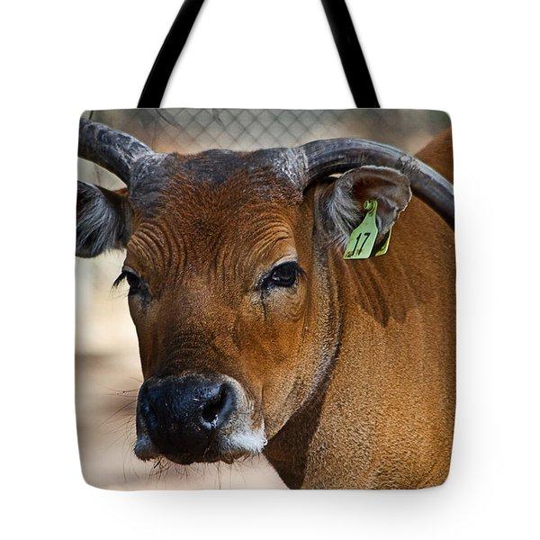Banteng Girl Tote Bag by Miroslava Jurcik
