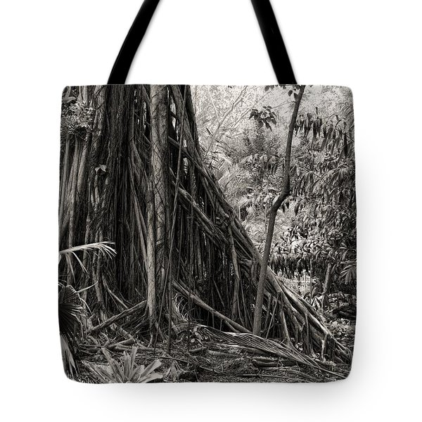Strangler Fig And Cypress Tree Tote Bag