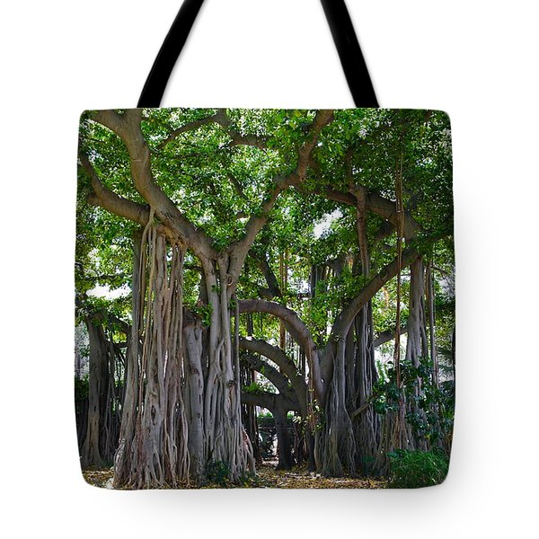 Banyan Tree At Honolulu Zoo Tote Bag