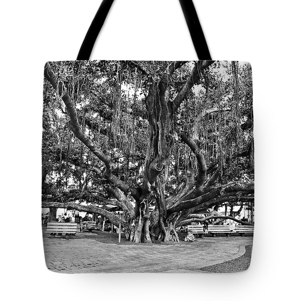 Banyan Tree Tote Bag by Scott Pellegrin
