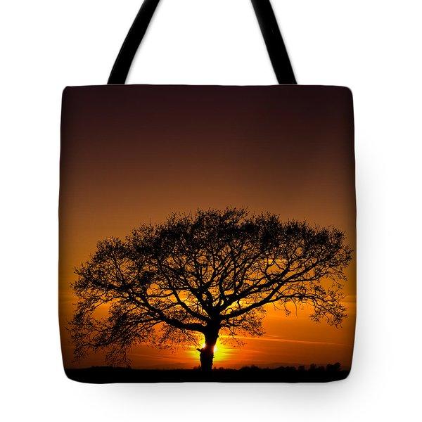 Baobab Tote Bag by Davorin Mance