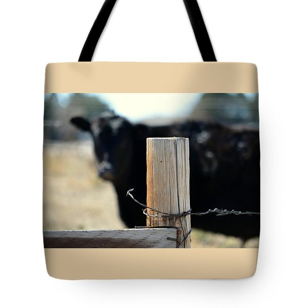 Barbed Wire Around Tote Bag by Clarice  Lakota
