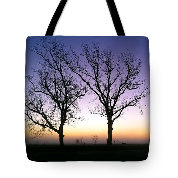 Bare Bones Tote Bag by Tim Stanley
