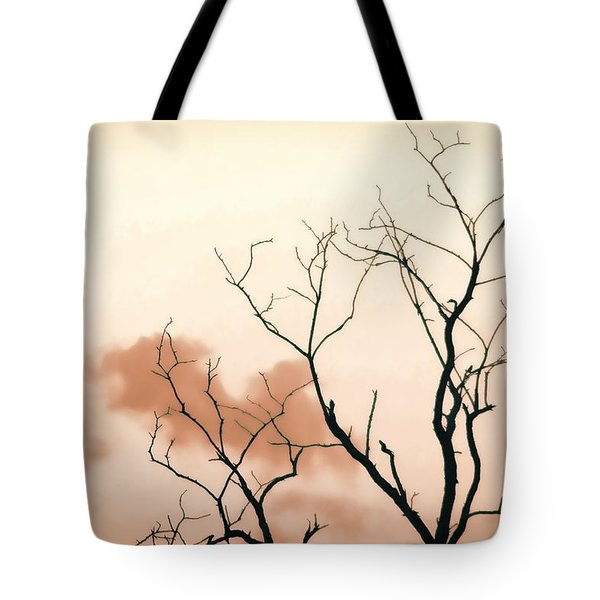 Bare Limbs Tote Bag by Denise Romano