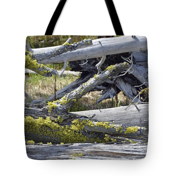 Bare Logs And Lichen In Yellowstone Tote Bag by Bruce Gourley