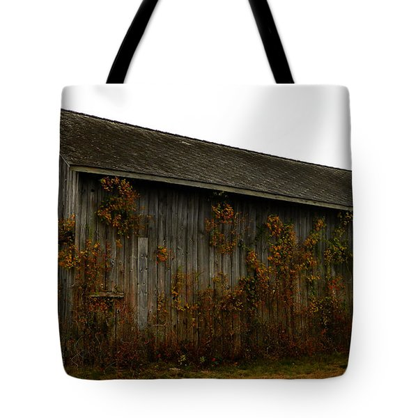 Barn 2 Tote Bag by Andrea Anderegg
