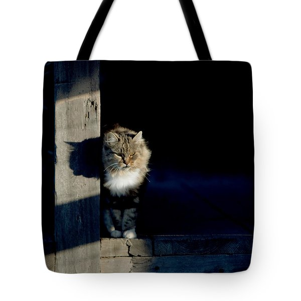 Barn Cat Tote Bag by Art Block Collections
