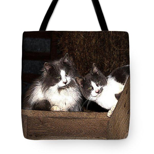 Barn Cats Tote Bag