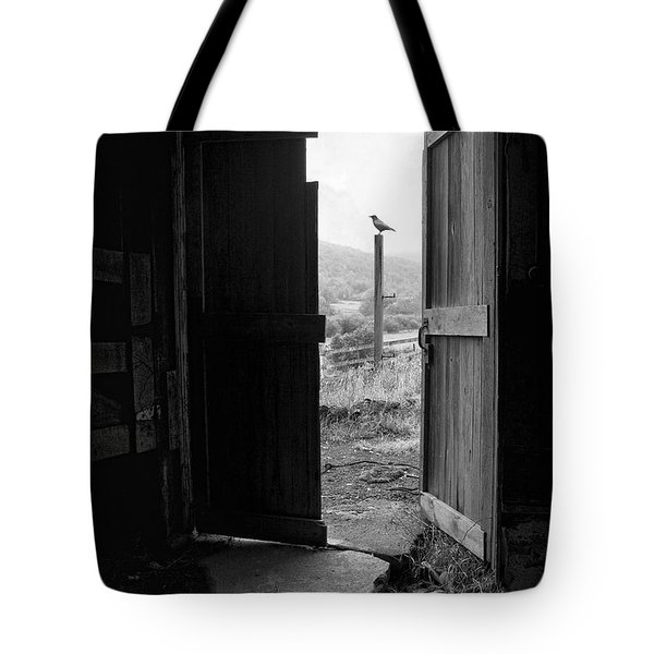 Barn Door - View From Within - Old Barn Picture Tote Bag by Gary Heller